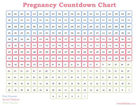photo regarding Countdown Calendar Printable identify Printable Being pregnant Countdown Chart
